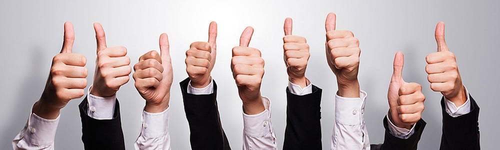 """9 thumbs up for the swich from web EDI to an outsourced solution at """"emil"""", a spirits manufacturer."""