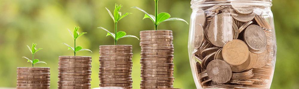 Subsidies for digitalization - saving money, investing, growing