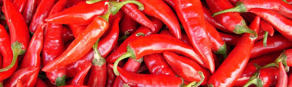 Close-up of red pepers to symolize the EDI services at Szegedi Paprika ZRt.